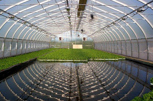recycling aquaculture system Problems and potentials of recycling wastes for aquaculture this study on the use of recycled wastes for aquaculture systems covers a wide range of.